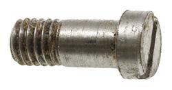 Guard Bow Swivel Screw, Used