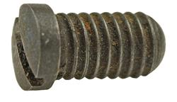 Guard Screw, Rear, Used Factory Original